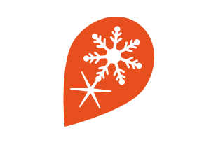 logo Flocomdeco